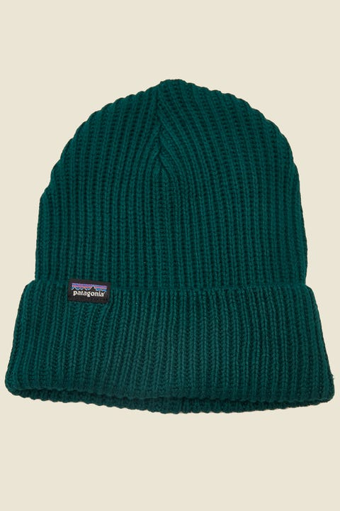 Patagonia Fisherman's Rolled Beanie Piki Green