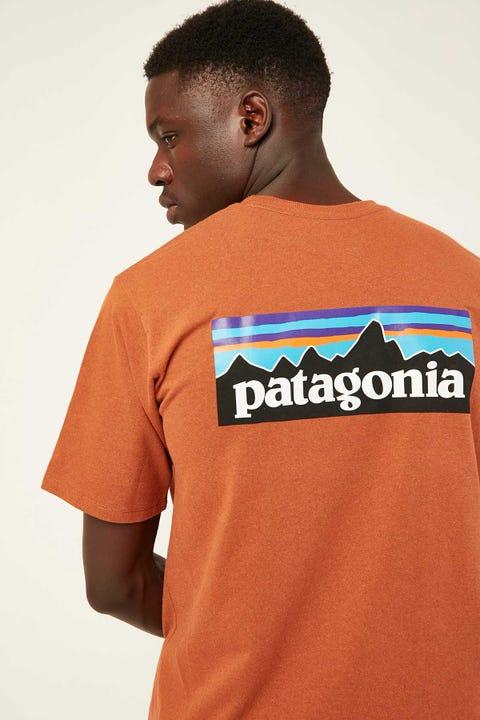 PATAGONIA M's P-6 Logo Tee Earthworm Brown