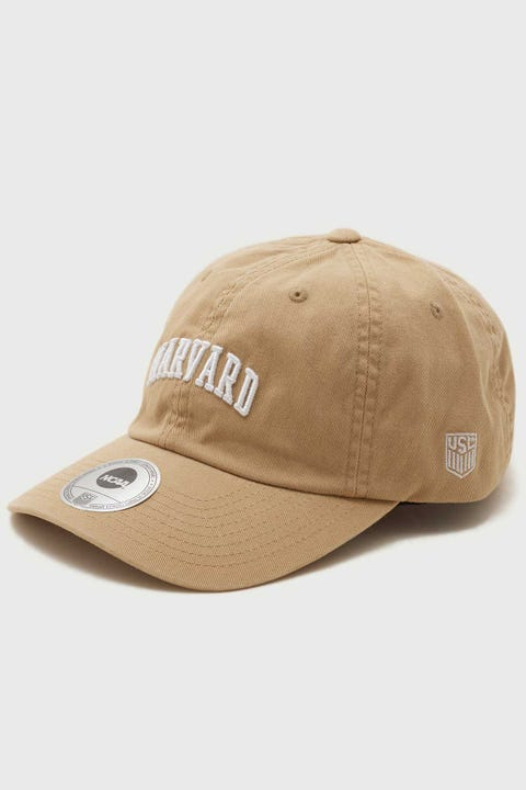 Ncaa Harvard Wordmark Dad Hat Beige