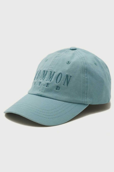 Common Need Reid Dad Cap Mineral Blue