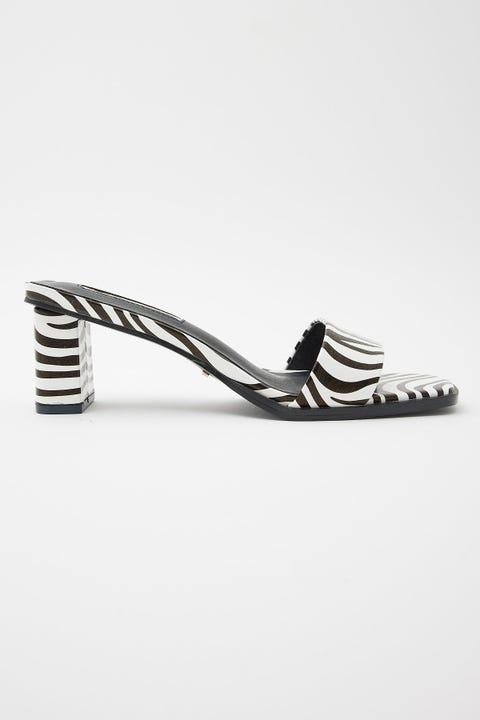 Billini Joplin Zebra
