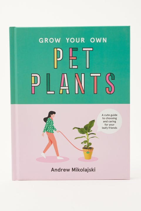 Grow Your Own Pet Plants